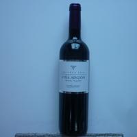 Paëlla à domicile - Vin rouge vina Ainzon